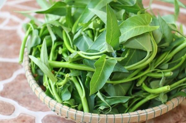 Ăn rau muống giúp tăng cường hệ miễn dịch cho cơ thể