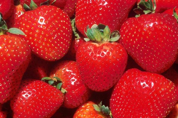 Anthocyanin – chất tạo màu đỏ trong dâu tây - được chứng minh làm giảm cholesterol, mức insulin sau bữa ăn
