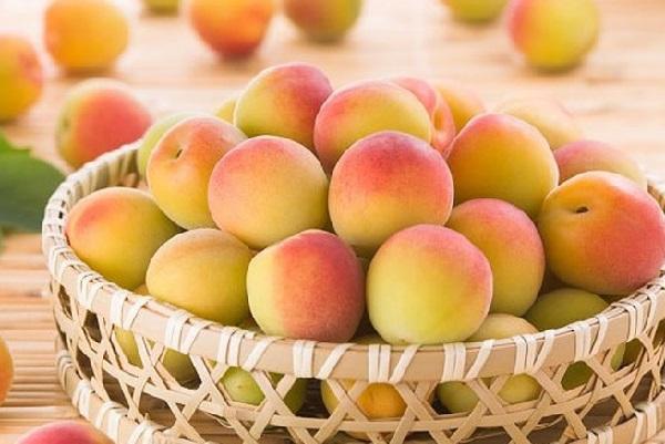 Vitamin C có trong quả đào giúp tăng số lượng và chất lượng tinh trùng