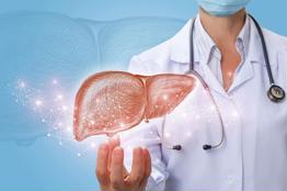 Ung thư gan giai đoạn đầu có thể phát hiện sớm hay không?