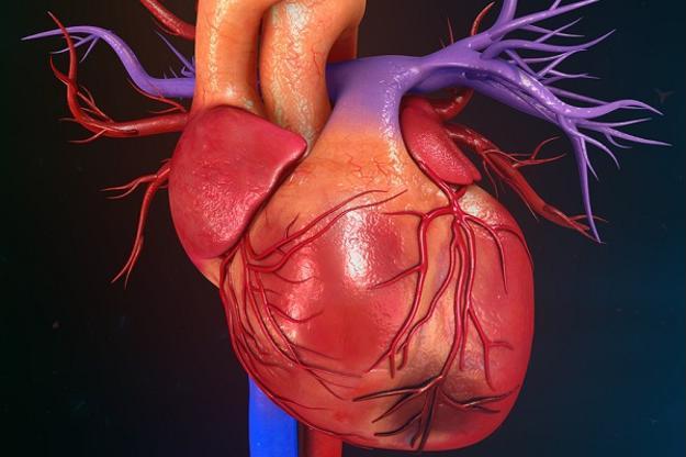 Dấu hiệu cảnh báo sớm cơn nhồi máu cơ tim